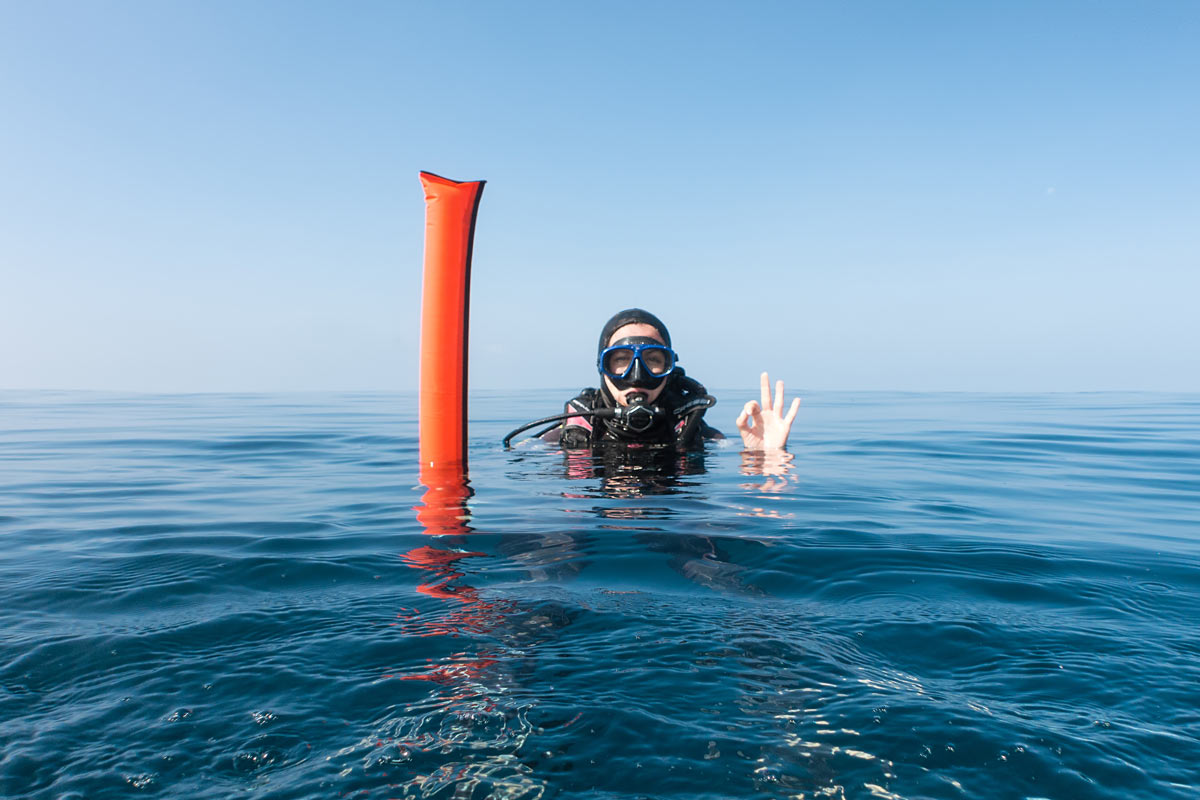 Diver surface marker device