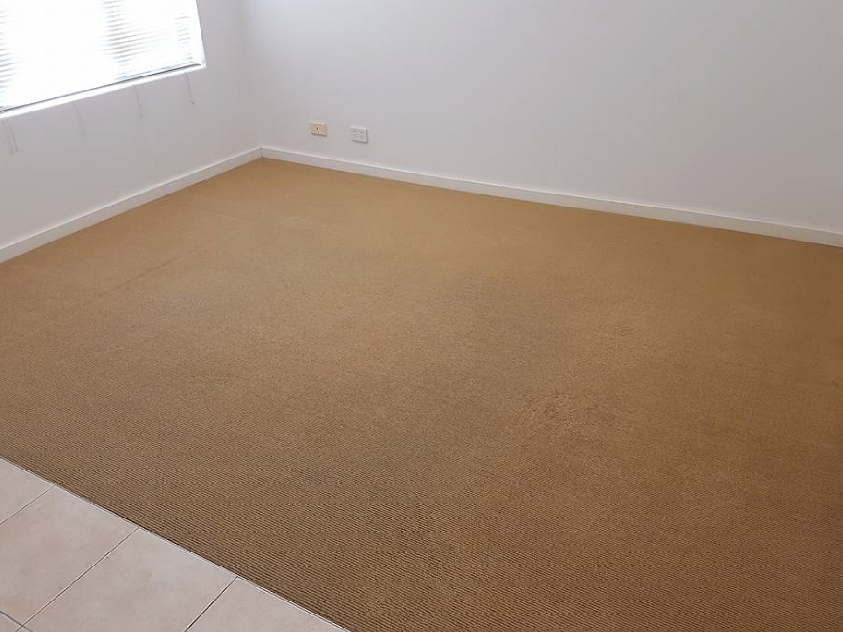 Emergency Carpet Cleaning