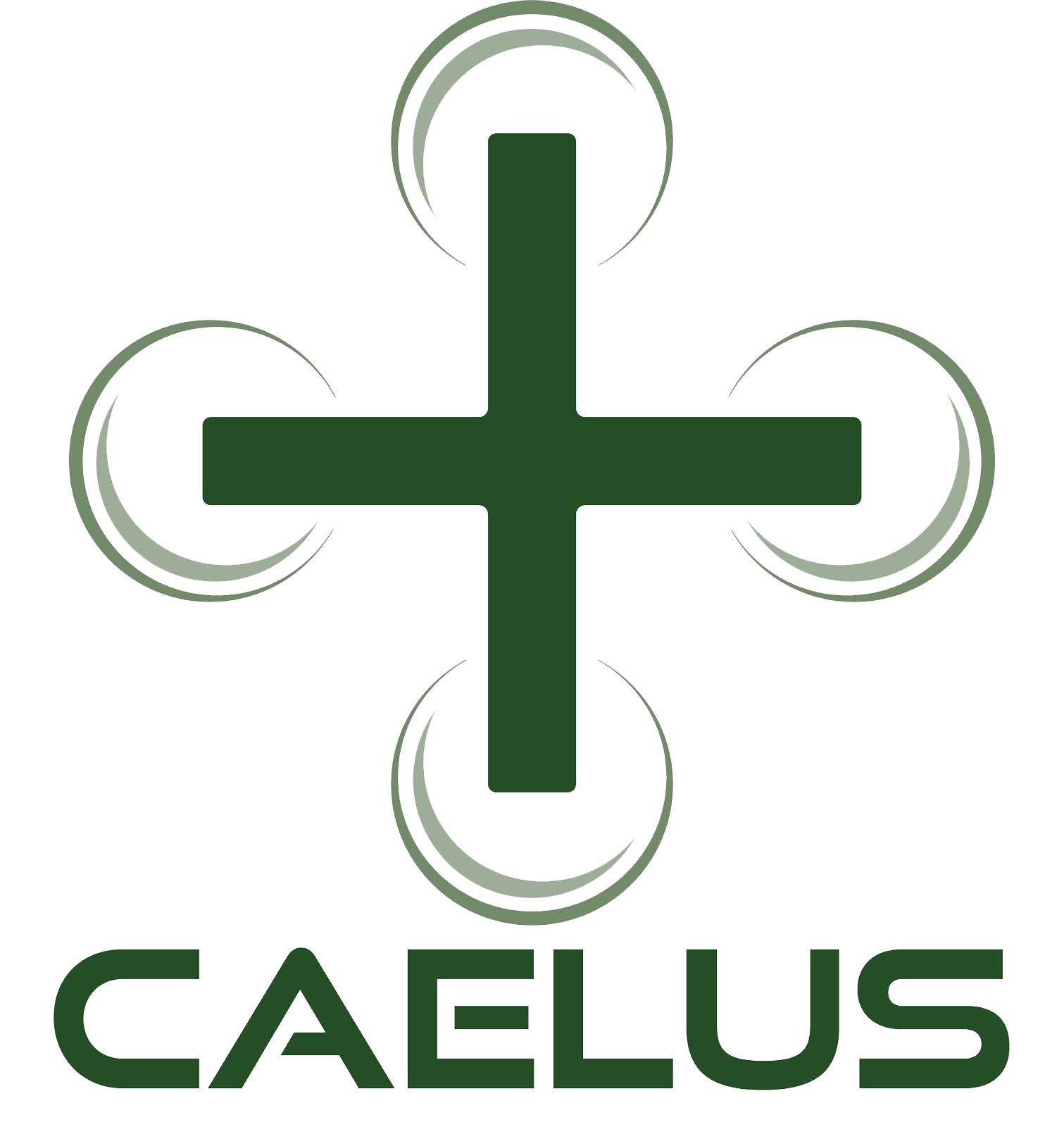 The CAELUS (Care & Equity – Healthcare Logistics UAS Scotland) project