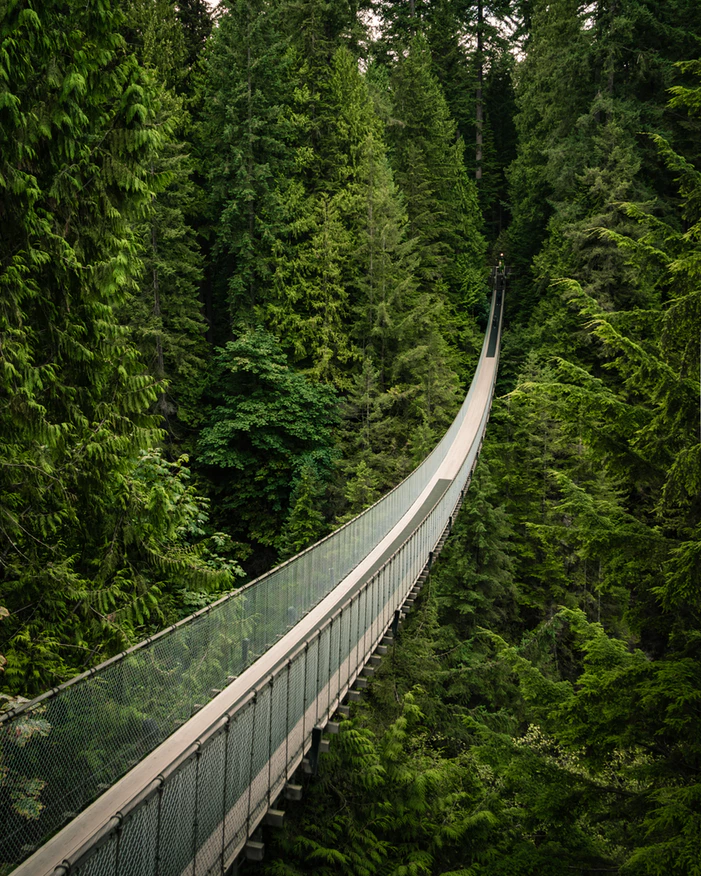 Vancouver - Canadá - Capilano Suspension Bridge