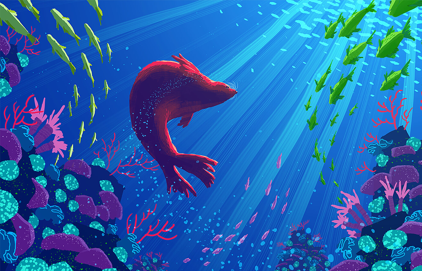 Series of colorful animal animations for Nat Geo Wild