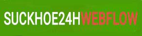 Ảnh Sức khỏe 24h Webflow