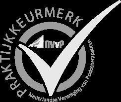 logo Podoplein