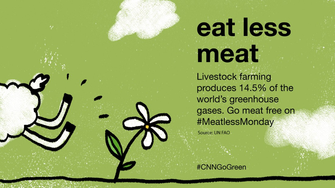 Cartoon style illustration of flower and sheep running away with caption: eat less meat