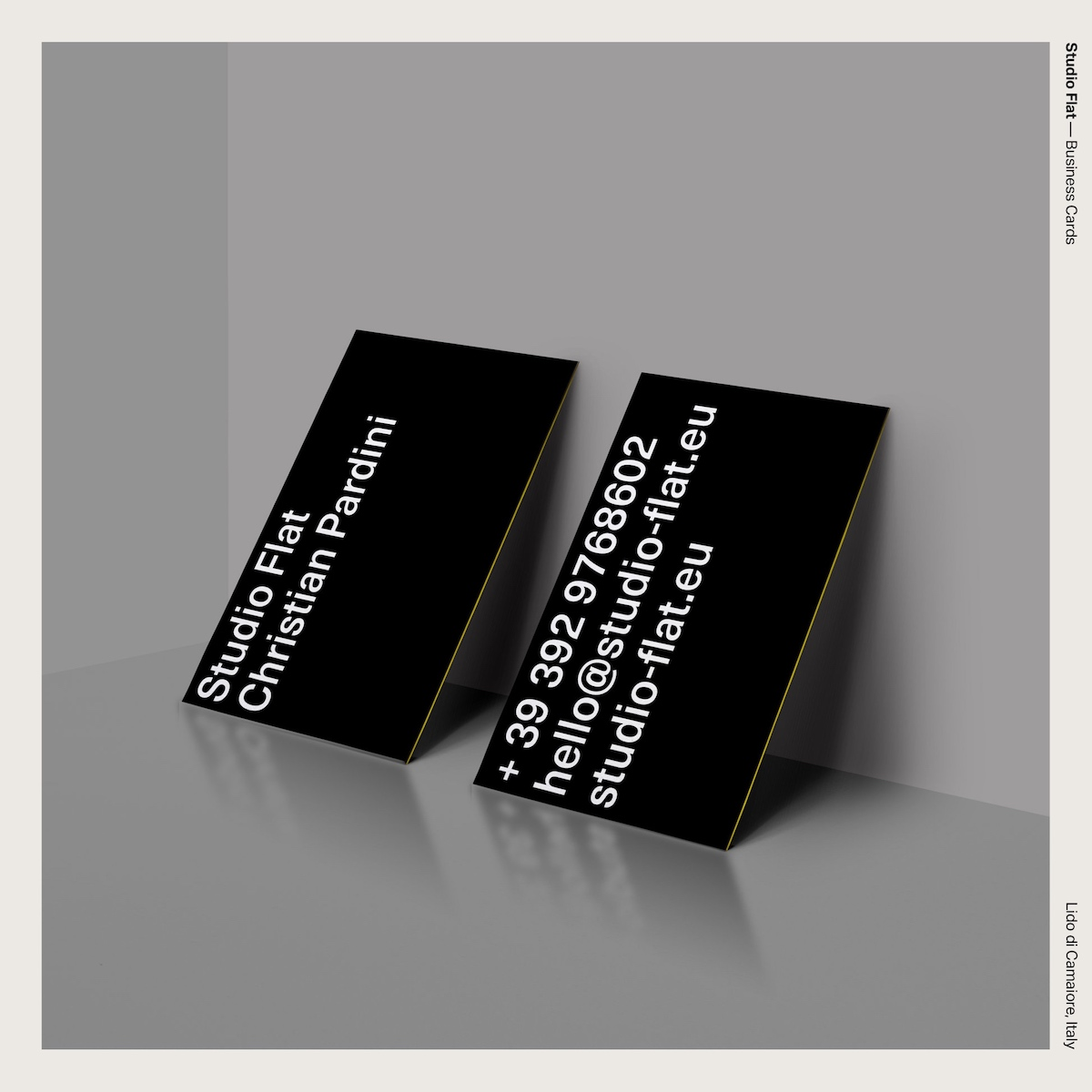 Studio Flat — Business Cards