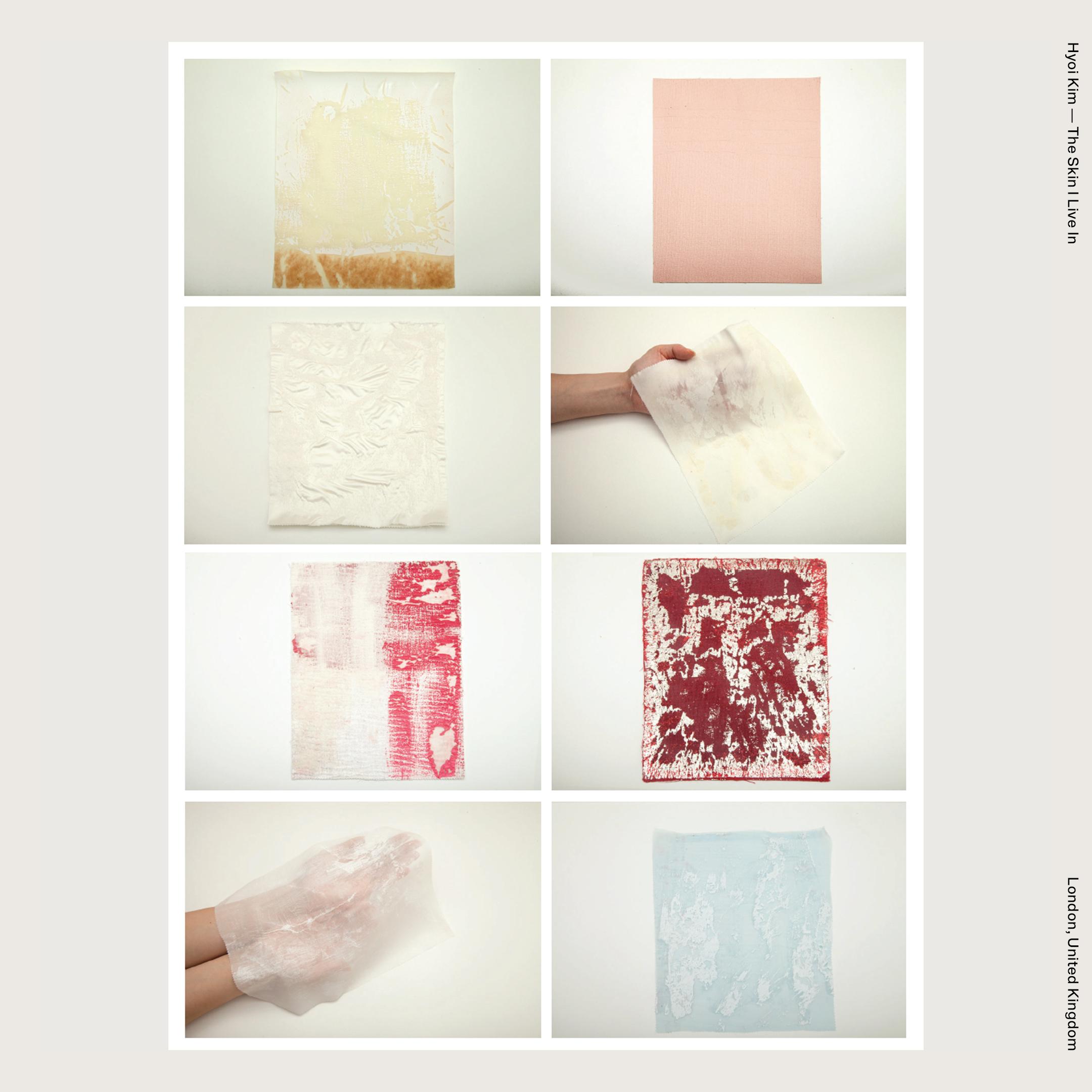 Hyoi Kim — The Skin I Live In