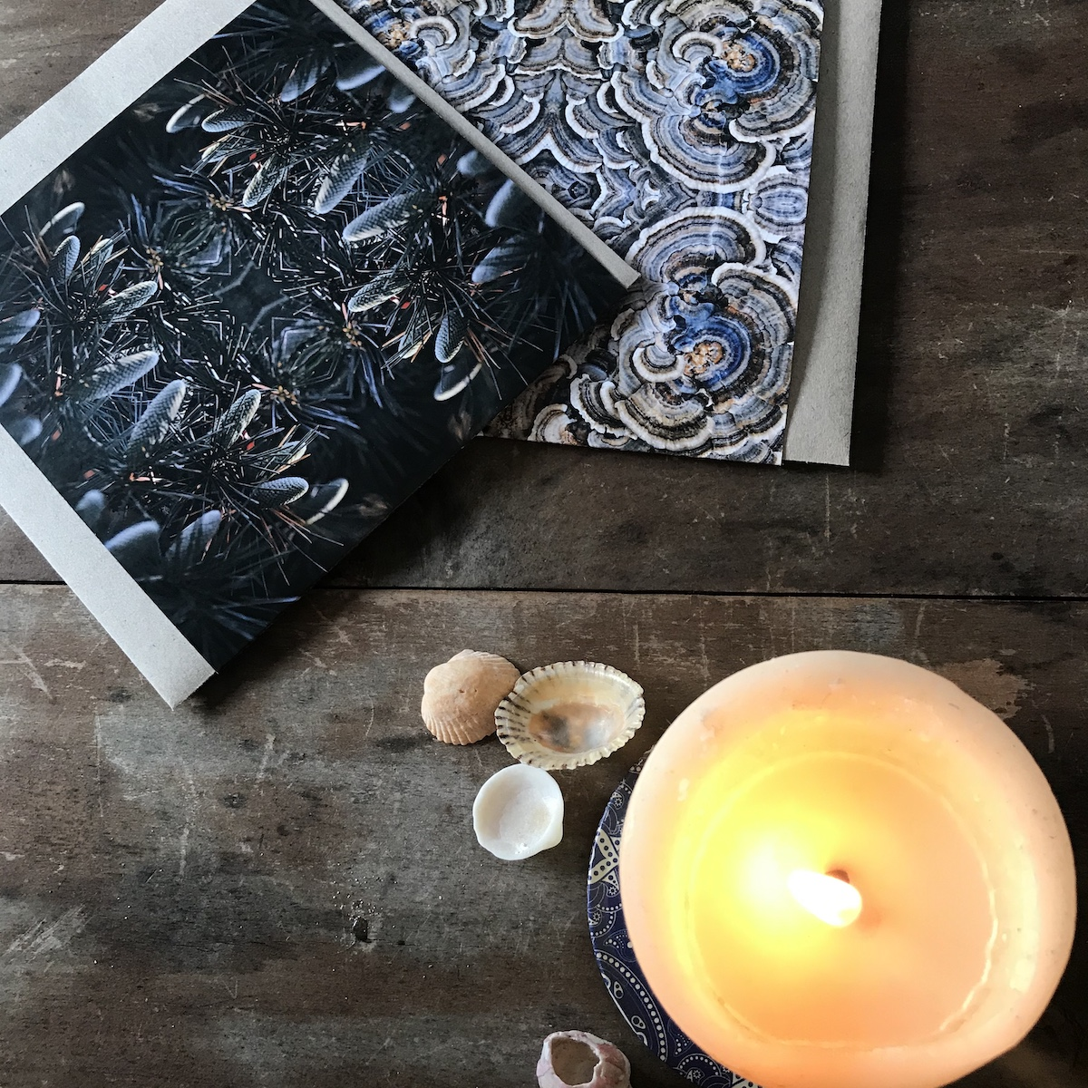 Overhead view of a burning candle with four small sea shells placed nearby There are two cards with abstract nature photography also displayed.