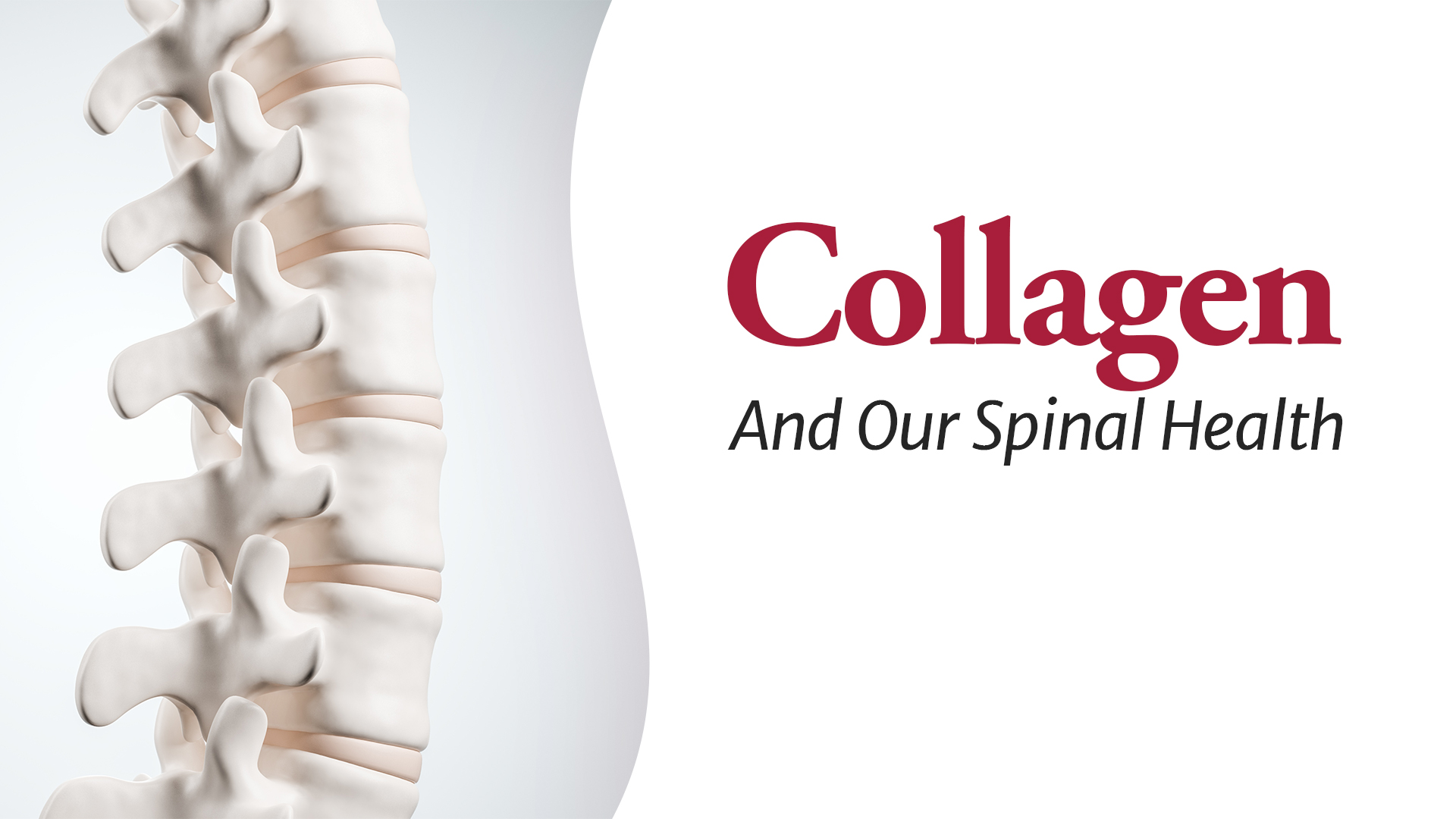 Collagen And Our Spinal Health Macquarie Chiropractic