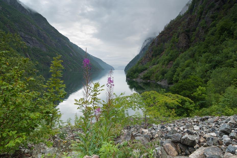 Fjord mellom to fjell