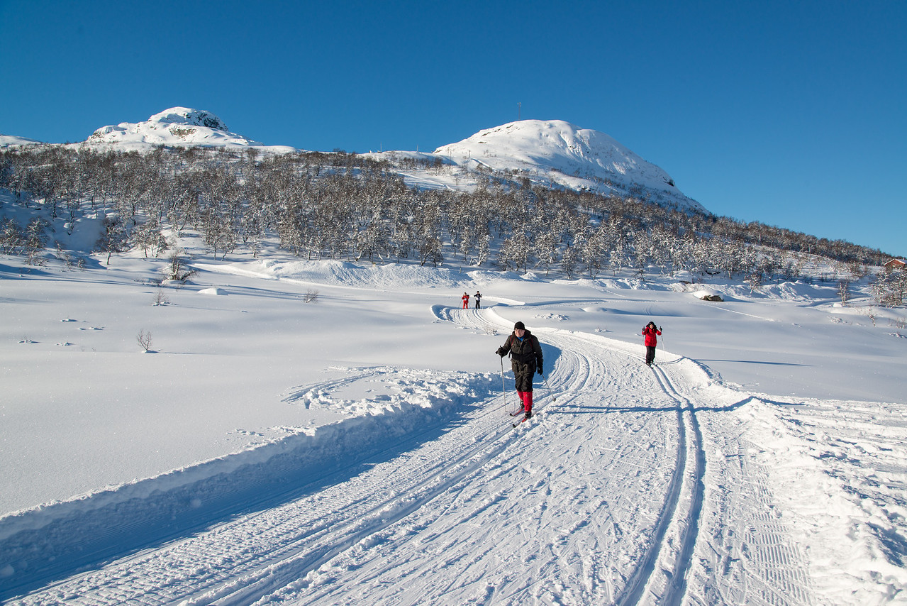 Mennesker i skiløype