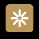 Skyryse App Icon