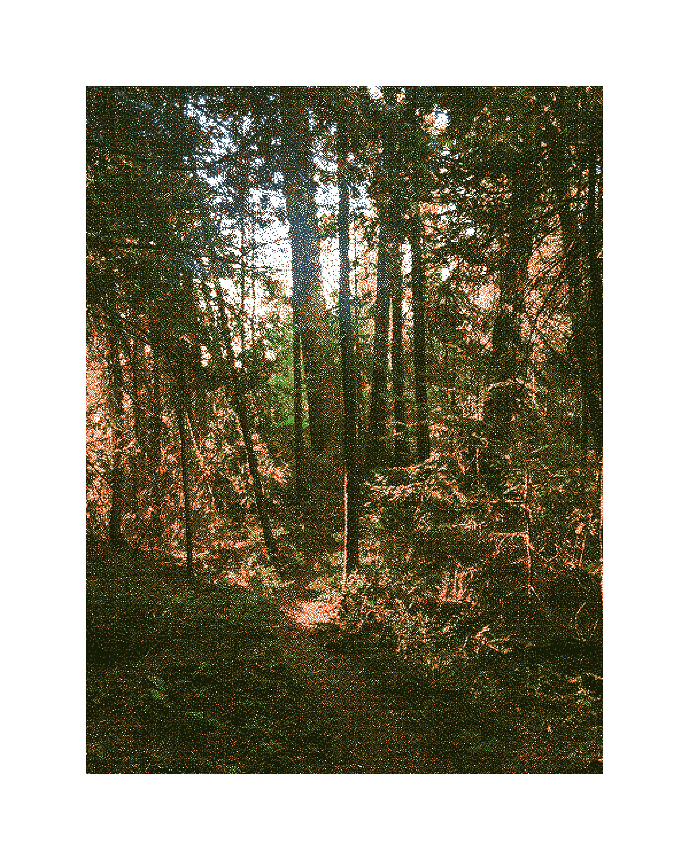 21_path