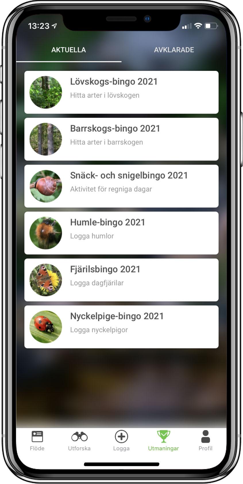En skärm som visas när man loggat en art