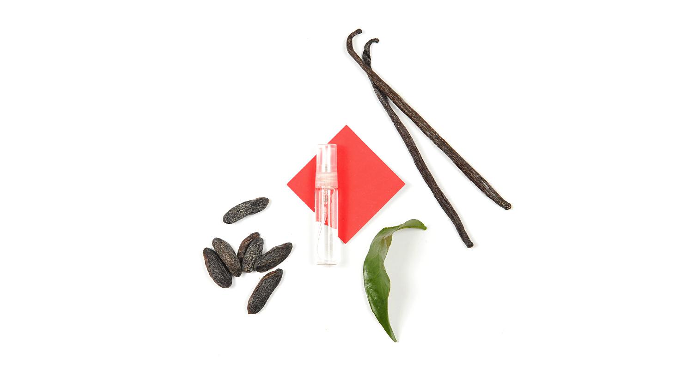 Un parfum doux tout en rondeur qui en tête révèle la délicate note de fleur d'oranger mêlée ensuite à la veloutée note de vanille et de fève tonka.