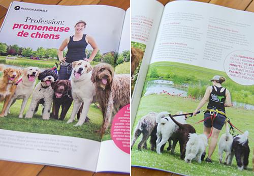 Magazine Animal photos promenades de chiens