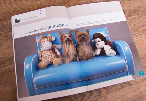 Photo chiens livre Yorkshire De Vecchi