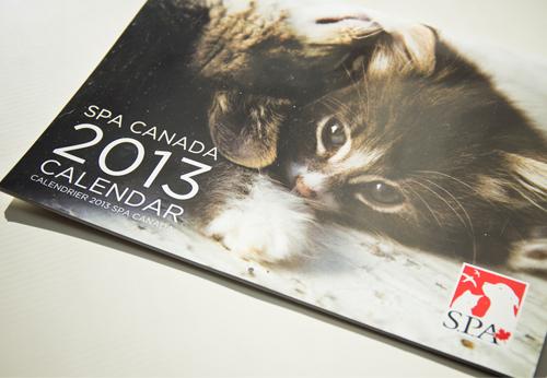 SPA Canada photos chiens calendrier 2013