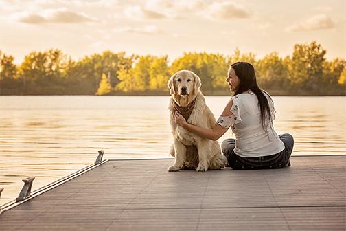 Photo chien âgé golden avec son humain