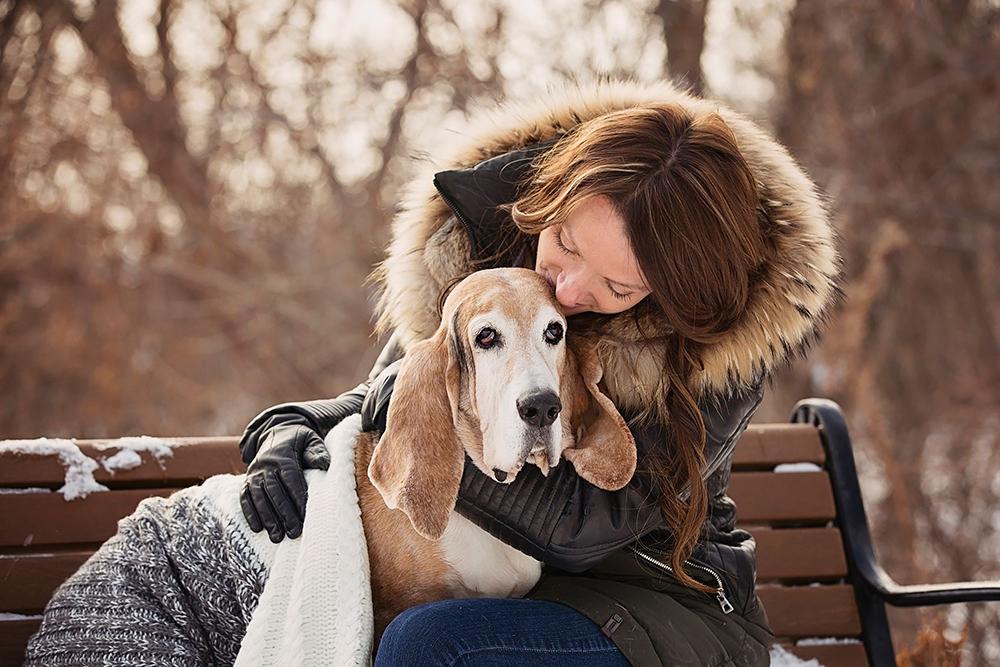 Portrait vieux chien basset avec femme