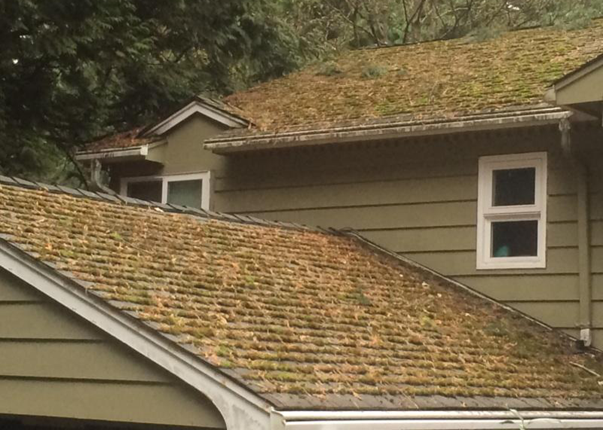 House roof before power washing