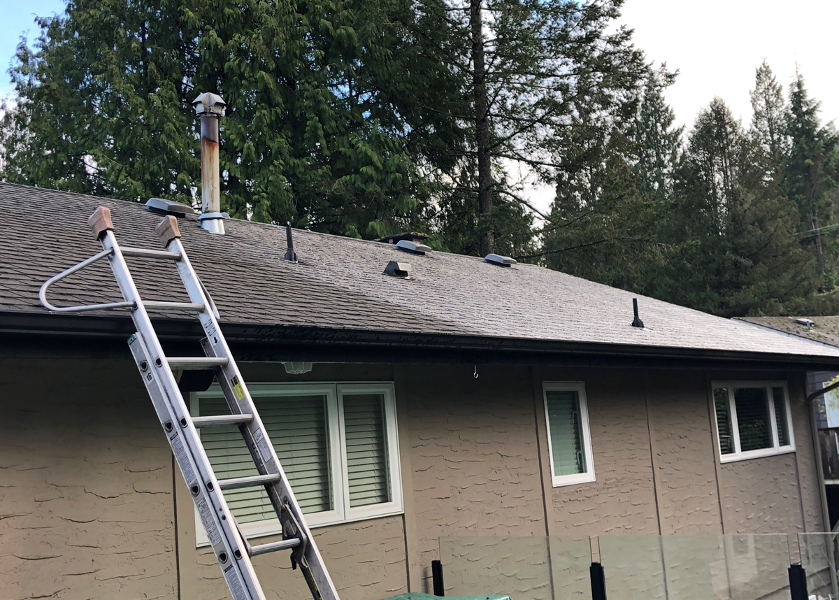 A roof that has been treated with the soft wash system.