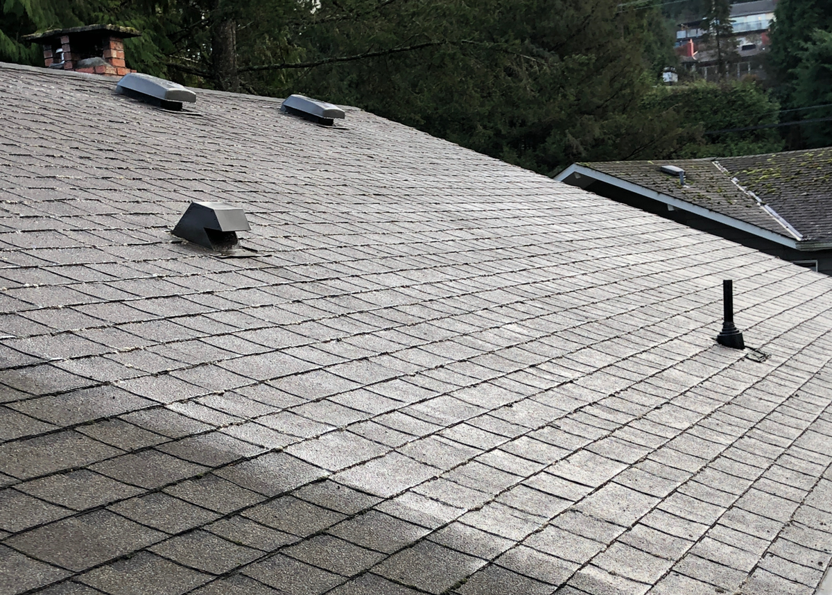 A roof that has been treated, free of moss and looking brand new.
