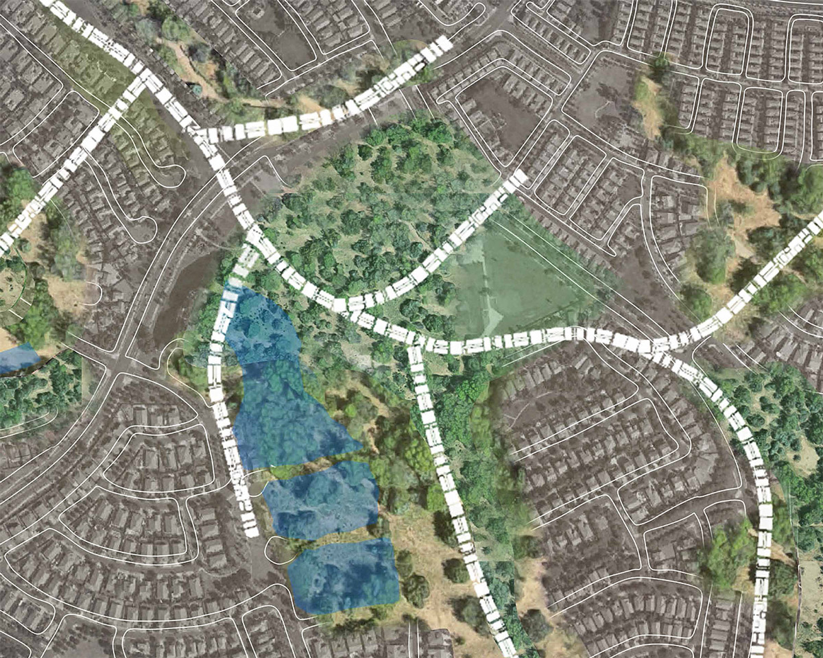 Urban plan for an infill system of branches housing that increases suburban density and adds parks by student Rikkie Pedregon