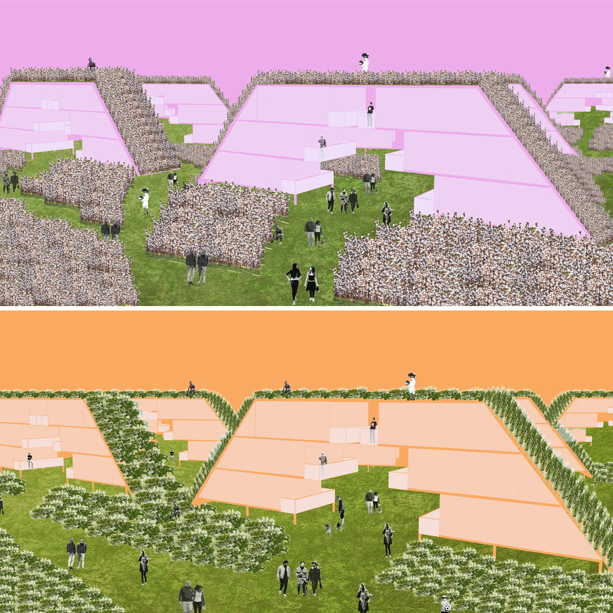Pair of perspectives illustrating the communal shifts in the farmed landscape between seasons by student Alejandra Lobato
