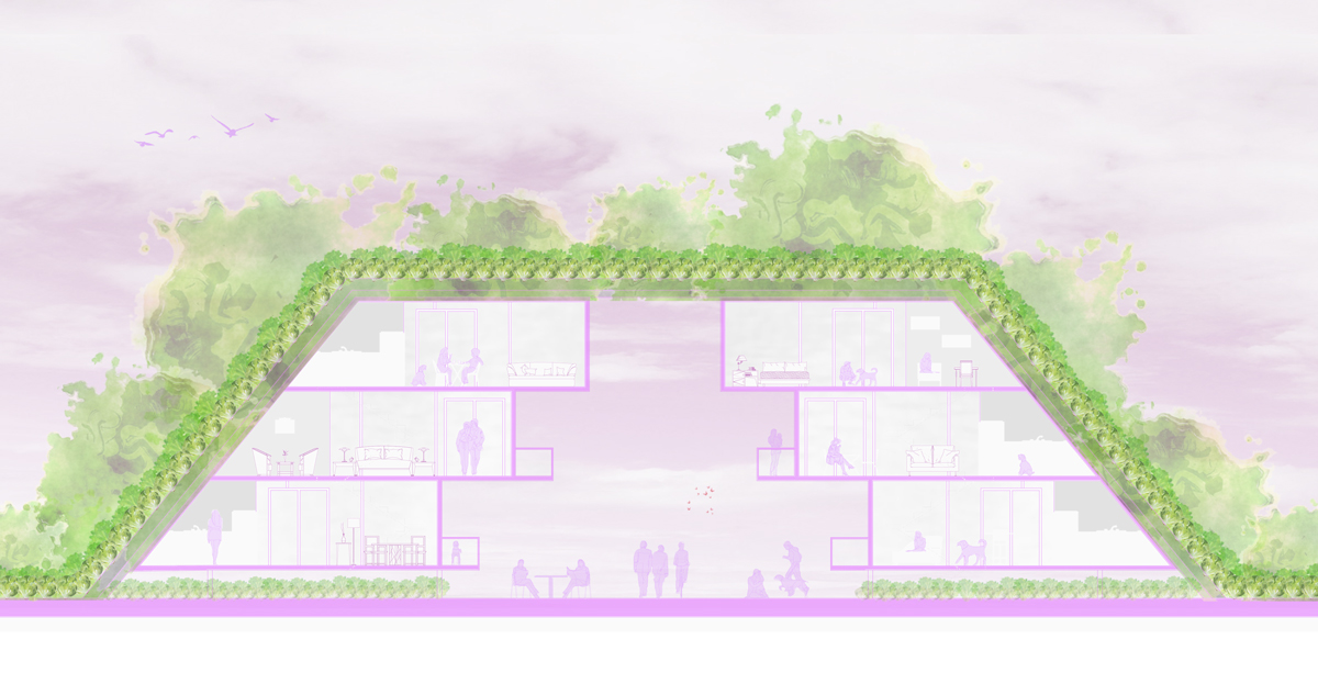 Section of a standard housing pair with a roof farm, three floors of housing, and a covered path by student Alejandra Lobato
