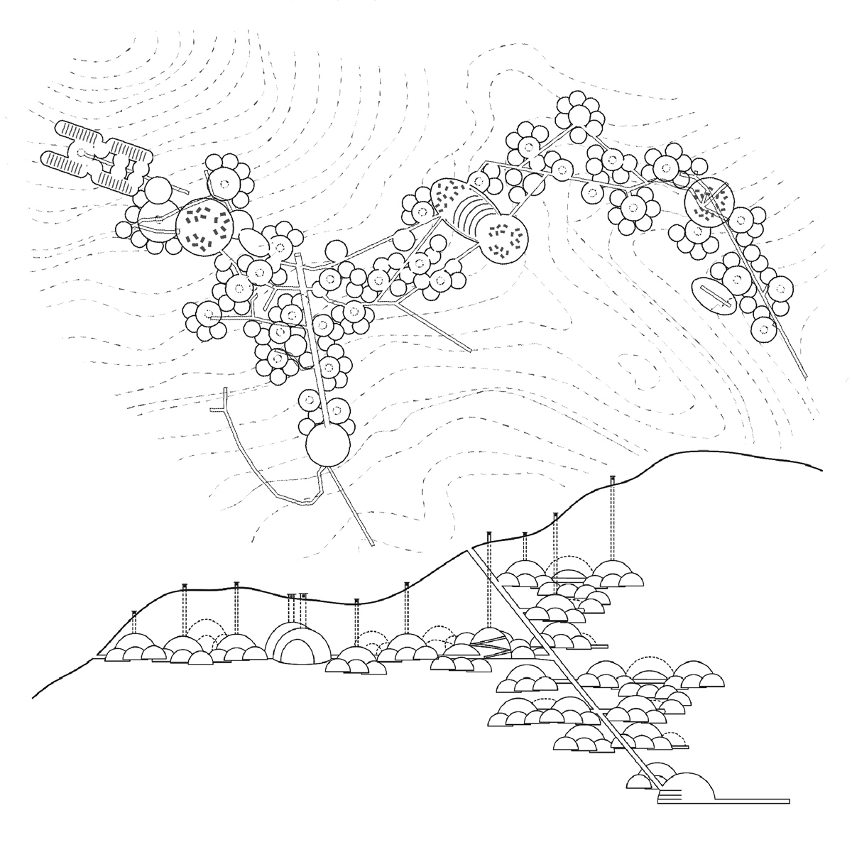 Combined plan and section study for a hidden community of underground mountain dwellings by student Brandon Powell
