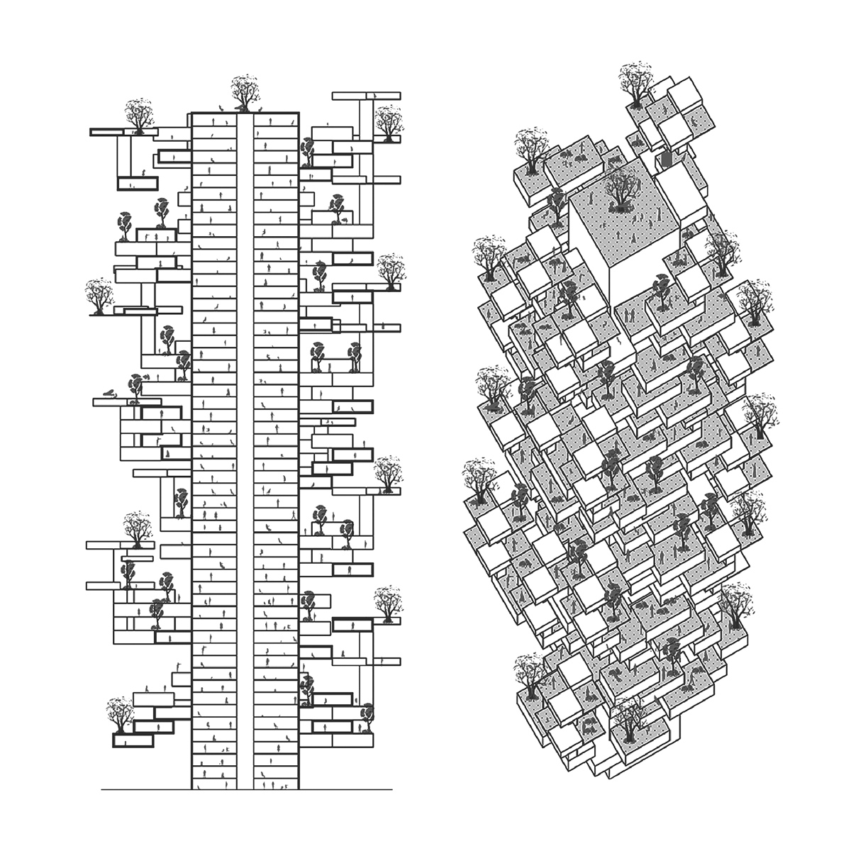 Combination section and isometric drawings of a study for a vertical terraced farm by student Zihao Li
