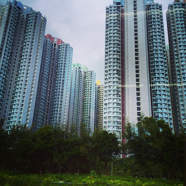 Photo of an accumulation of gray housing towers set within a park in Hong Kong