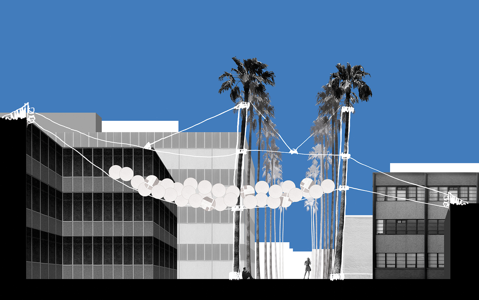 Section drawing showing the scale and relationship of the PEP canopy with the palms and university buildings along Palm Walk