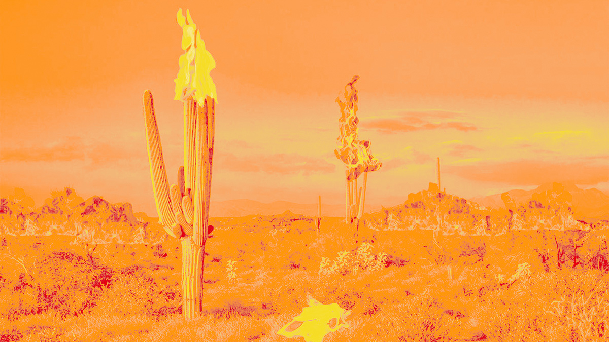 Collage of a the desert on fire