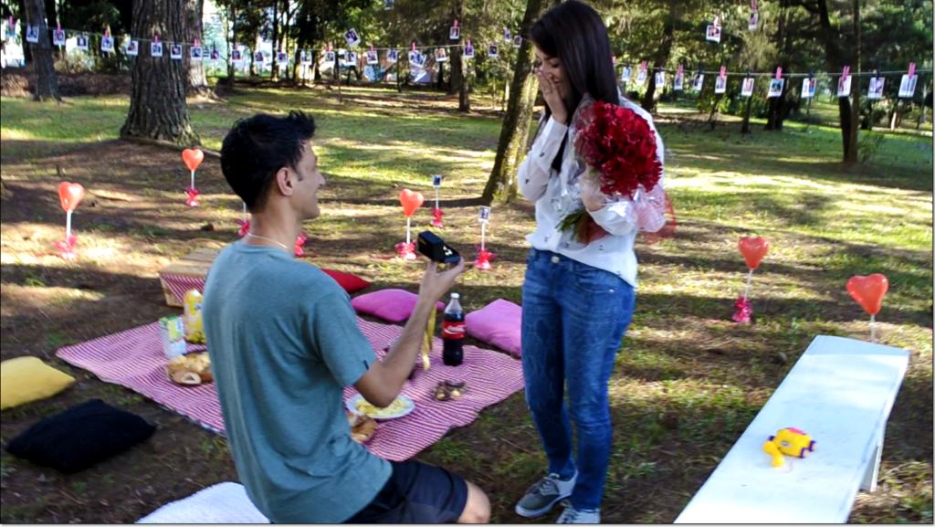 pedido de casamento no piquenique