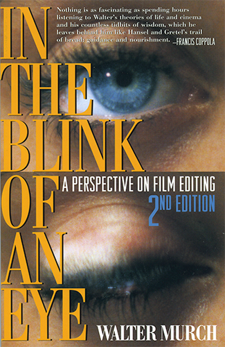 Book cover: In the blink of an eye