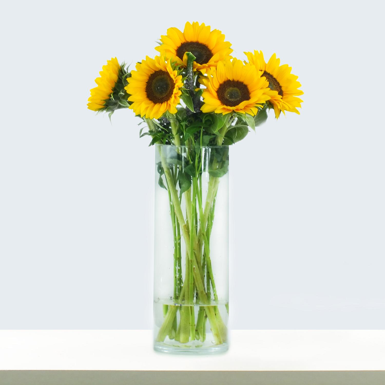 sonnenblumen, blumenstrauss online bestellen
