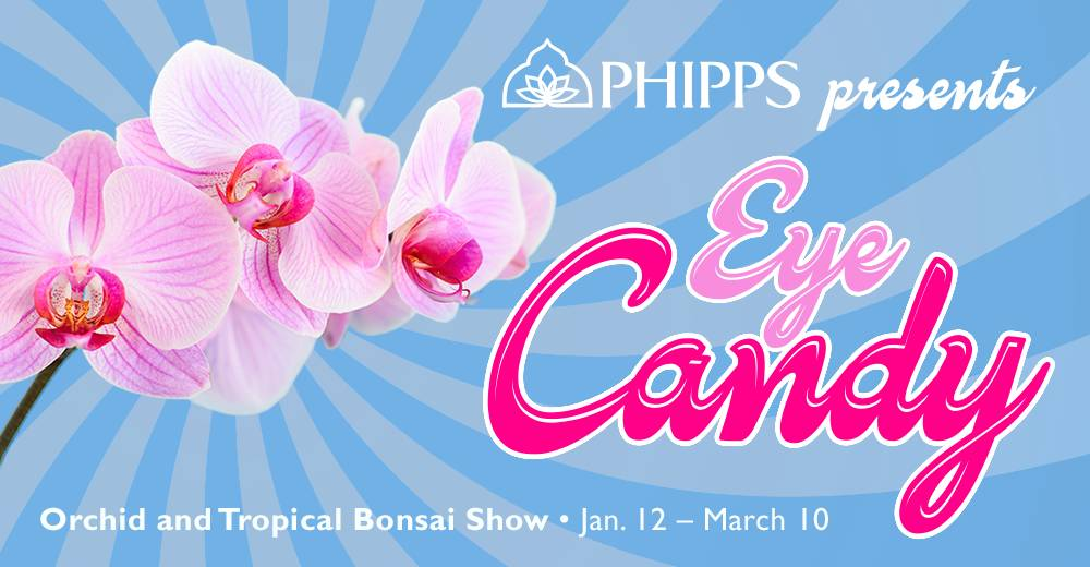 Eye Candy special event poster