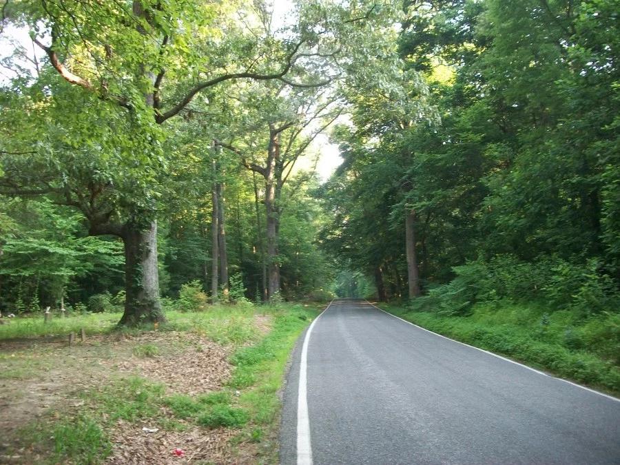 Paved biking trail in Pittsburgh PA