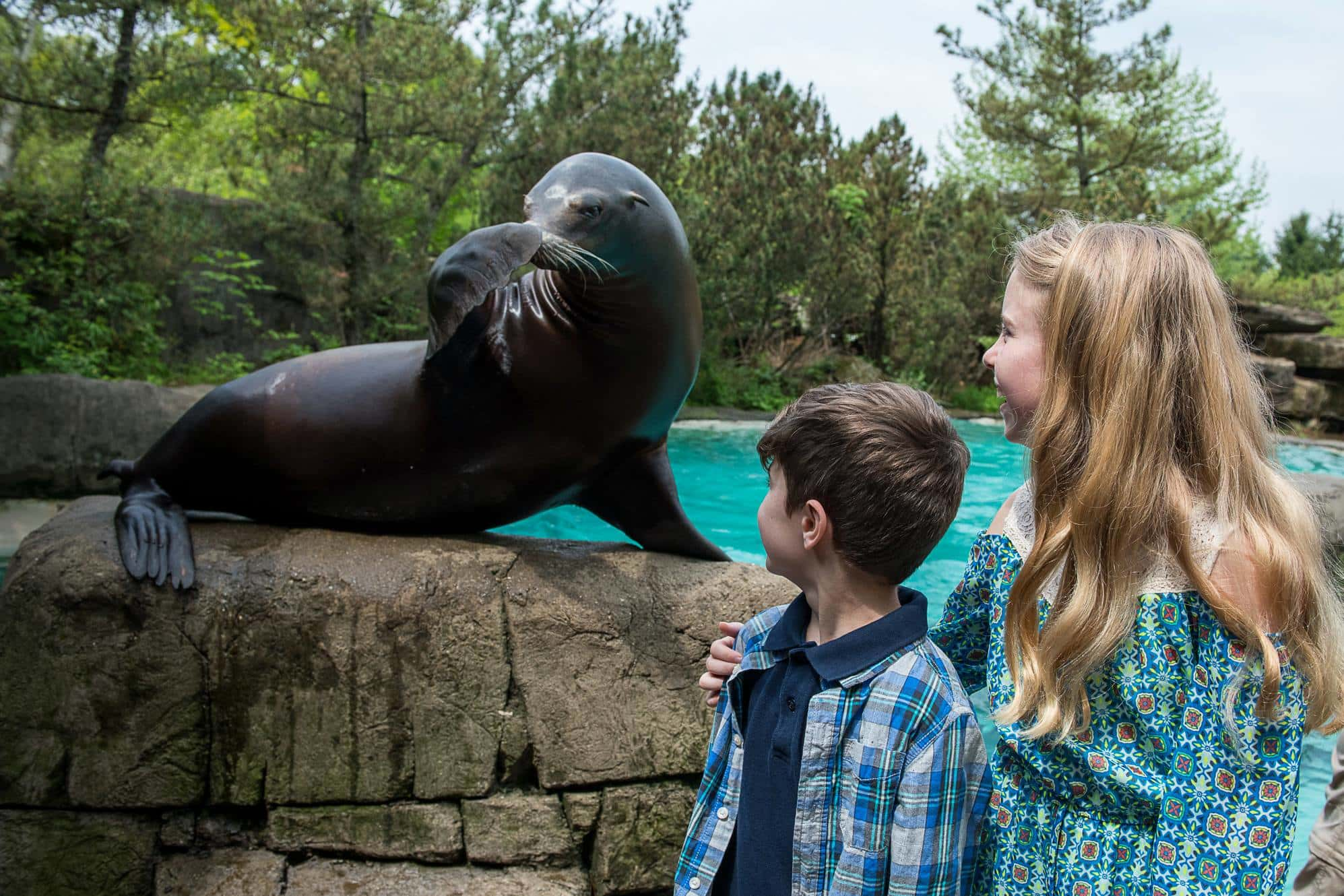 the Pittsburgh Zoo
