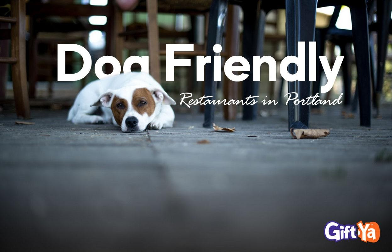 Dog Friendly Restaurants in Portland
