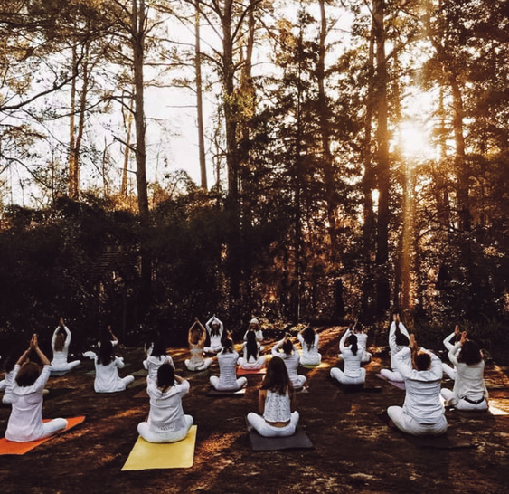 A yoga class all in white practicing together in the woods at sunrise