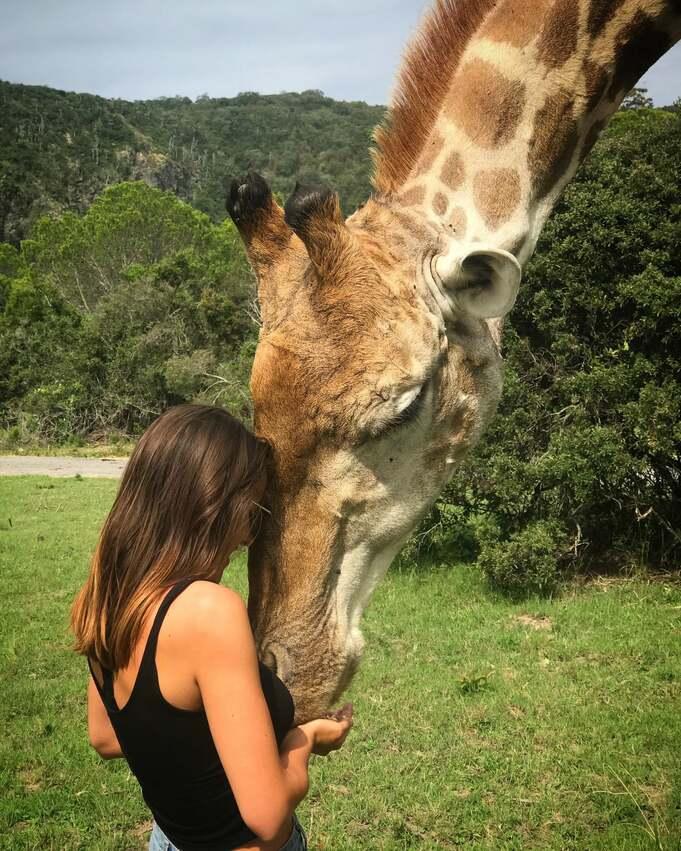 A female travel vet hugging a giraffe's face