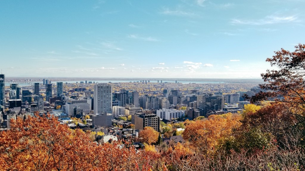 Montreal skyline with yellow and orange autumn leaves