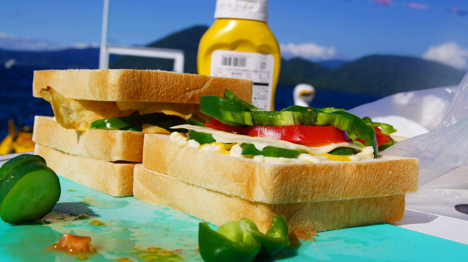 A close up picture of vegetarian sandwiches on a roadtrip