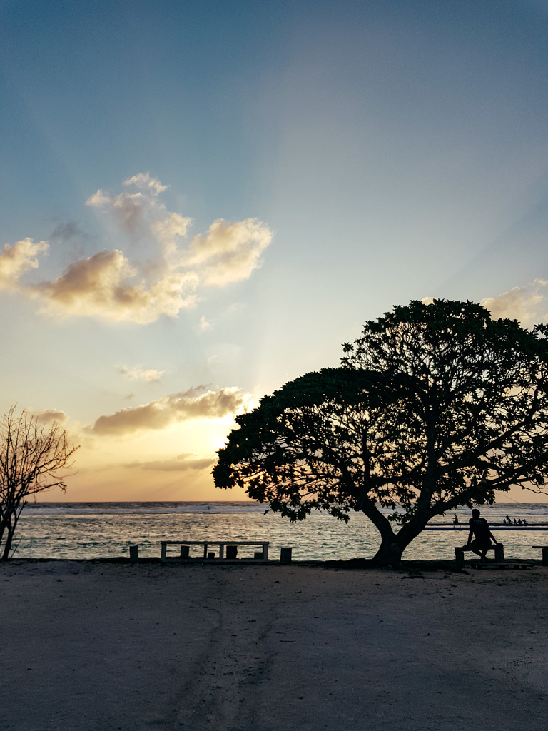 a peaceful sunset on the ocean with a tree and a man sitting on a bench in the Maldives