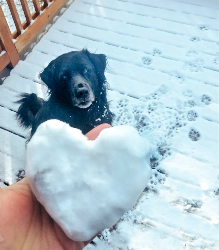 A black dog sitting in the snow with a woman holding a heart-shaped snow ball