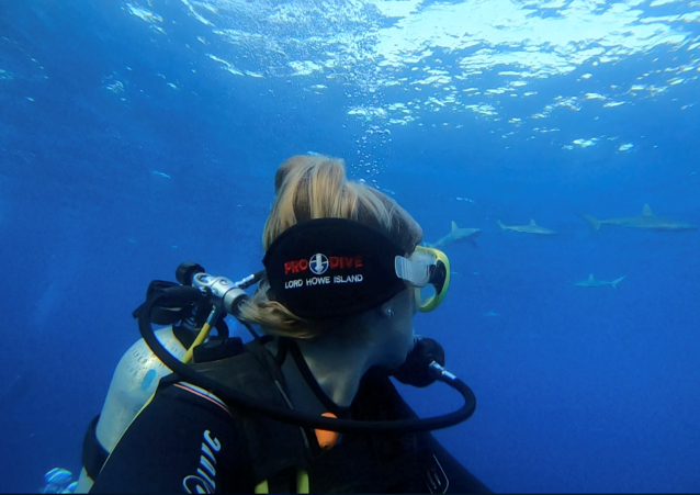 a female scuba diver looking over her shoulder at a shool of sharks