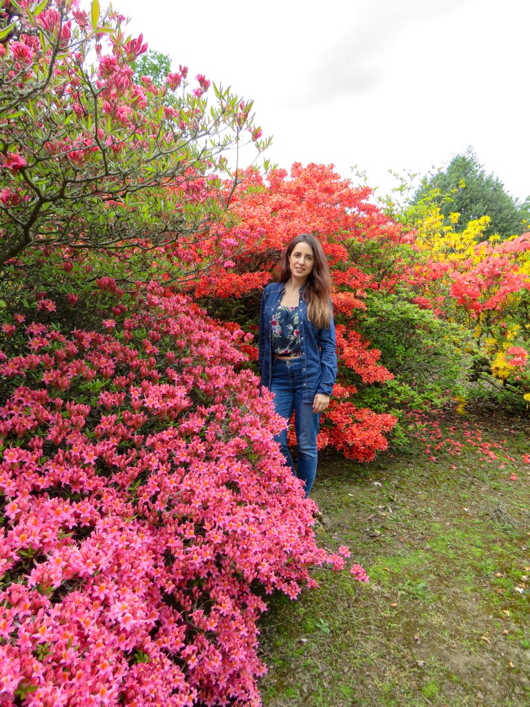 A Spanish woman posing in front of pink, yellow and orange blossoms at a garden in Leeds, UK.