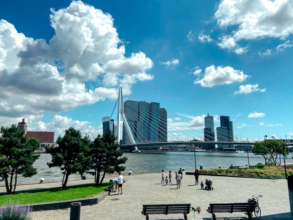 A beautiful, sunny day in Rotterdam, Netherlands with people walking along the river and office buildings in the background